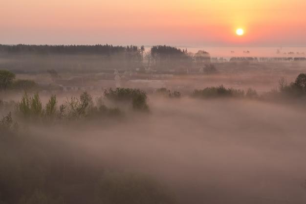 Dikke mist in de lenteochtend over het dorp
