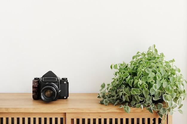Dischidia oiantha plant door een analoge camera op een houten kast