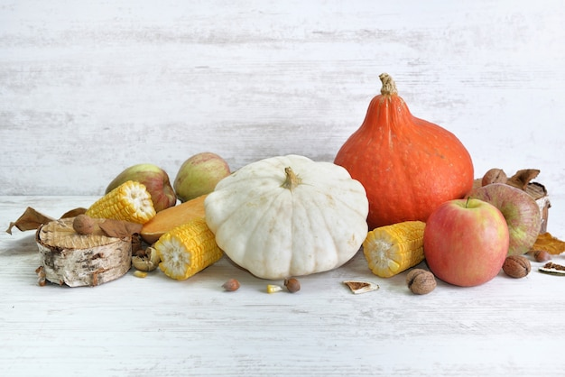 Diverse en kleurrijke herfstgroenten en fruit