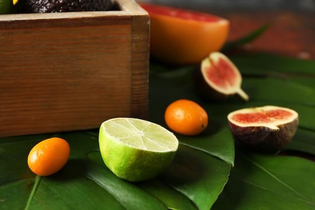 Diverse heerlijke exotische vruchten op tropische bladeren