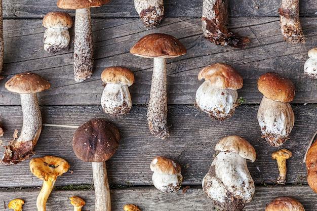 Diverse rauwe eetbare paddestoelen penny bun boletus leccinum op rustieke tafel. eekhoorntjesbrood over houten donkere achtergrond