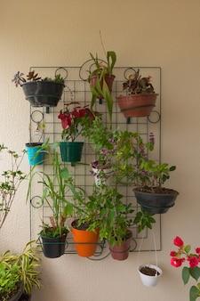 Diverse soorten planten op het balkon van het pand