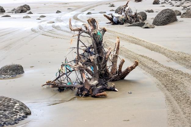 Dode boomtak op een bruin zandstrand aan zee met verspreide stenen