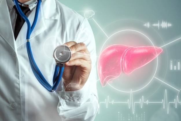 Dokter en leverhologram, leverpijn en vitale functies. concept voor technologie, hepatitisbehandeling, donatie, online diagnostiek.