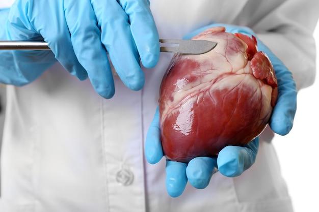 Dokter hart orgel en scalpel houden close-up