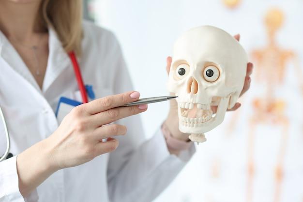 Dokter houdt skelet van de schedel in medische kantoor