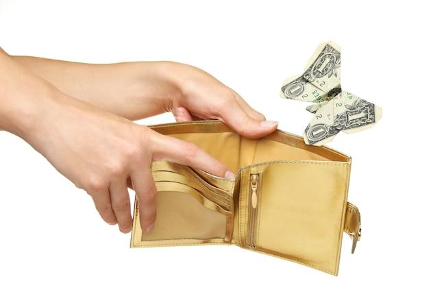 Dollar gevouwen tot een vlinder en wegvliegen uit portemonnee