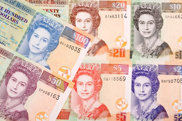 Dollars uit belize een zakelijke achtergrond