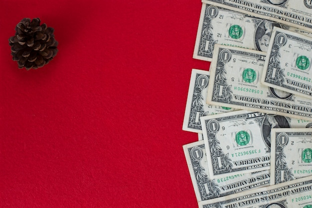 Dollarsrekeningen over rood met denneappel