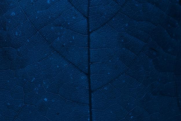 Donkerblauwe achtergrond met plantpatroon