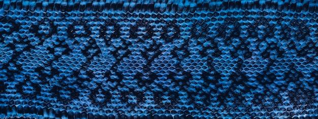 Donkerblauwe slanghuidtextuur