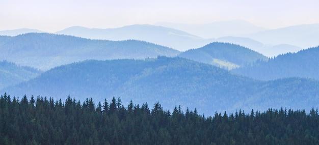 Donkere rij bomen met blauwe bergen bij koud weer