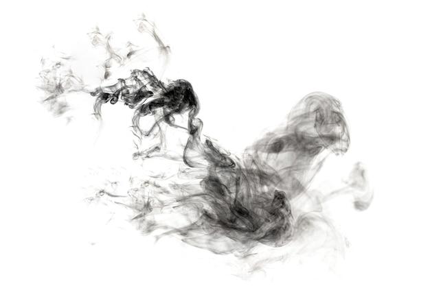 Donkere rook geïsoleerd op een witte achtergrond