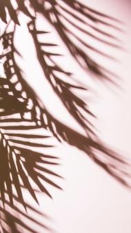 Donkere schaduw van gekleurde achtergrond
