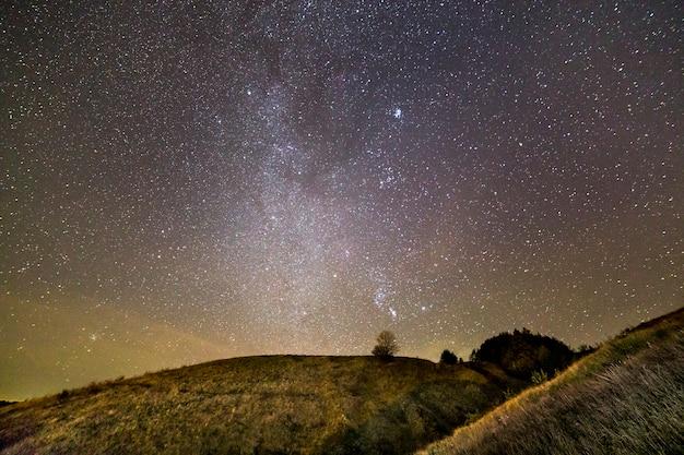 Donkergroene met gras begroeide heuvels, eenzame boom en struiken 's nachts onder een prachtige donkerblauwe zomer sterrenhemel