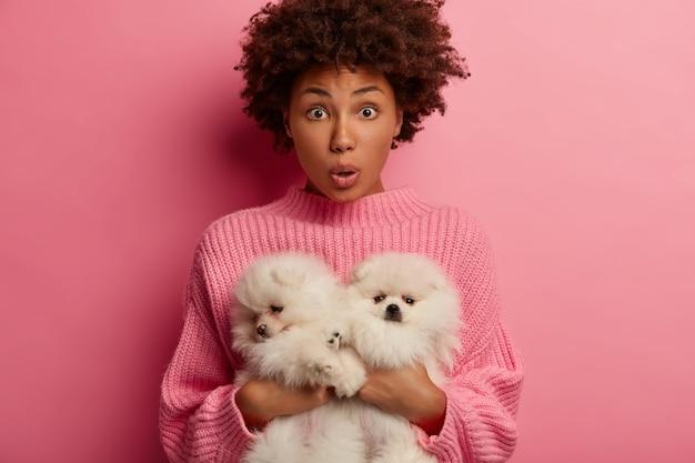 Donkerhuidige dame kijkt geschokt, bang en opgewonden omdat huisdieren een ernstige ziekte hebben, stomverbaasd om zwerfdieren op straat te vinden, geïsoleerd over roze muur Gratis Foto