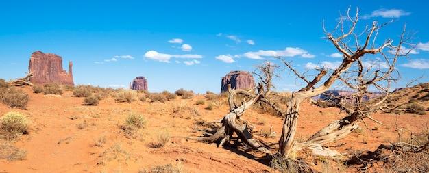 Dood hout in monument valley, panoramisch uitzicht, verenigde staten