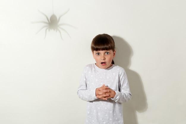 Doodsbang kind staat roerloos met grote bange ogen, ziet schaduw van spin op muur, angst voor insecten, gekleed in vrijetijdskleding, geïsoleerd over grijze muur.
