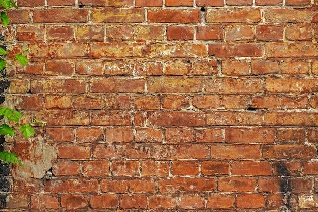 Doorstane bevlekte oude bakstenen muurachtergrond. rode oude bakstenen muur.