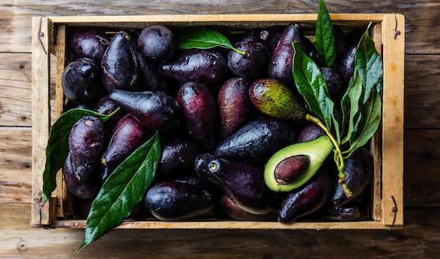 Doos met verse avocado met bladeren. oogstconcept