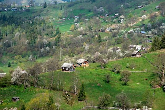 Dorp in de bergen. hutten op een heuvel met frisgroene bergweiden.