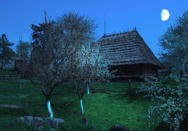 Dorpshuis in oekraïne, opgenomen in openluchtmuseum van houten architectuur in uzhhorod
