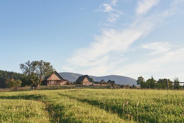 Dorpshuizen op heuvels met groene weiden in de zomerdag. huis van herders in karpatische bergen
