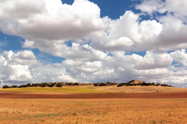 Dorre landschap met verschillende gewassen in warme kleuren.