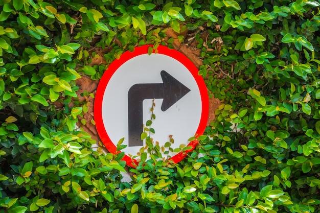 Draait naar rechts bord met groen blad