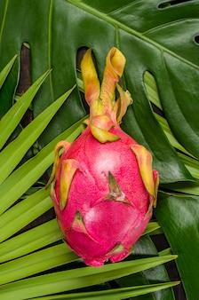 Dragon fruit op de bladeren van palm en monster.