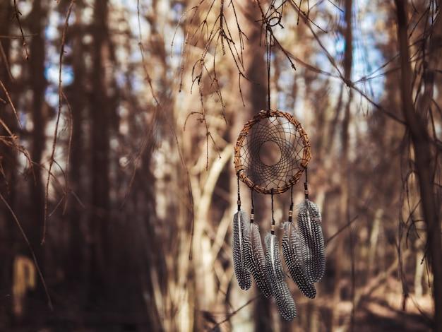 Dreamcatcher handgemaakt van wilg in een droog bos