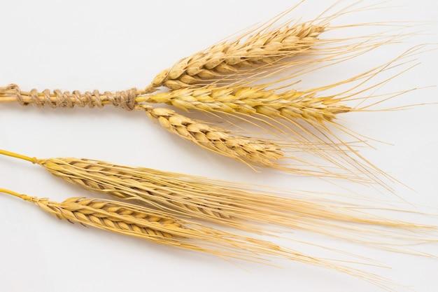 Drie aartjes tarwe vastgebonden met touw en twee gersttakje