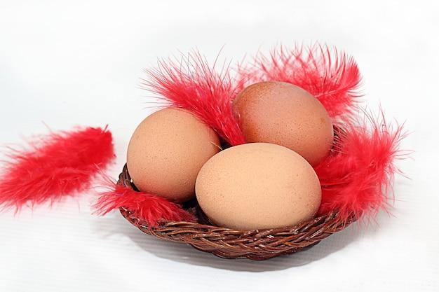 Drie eieren in een mand en een veer
