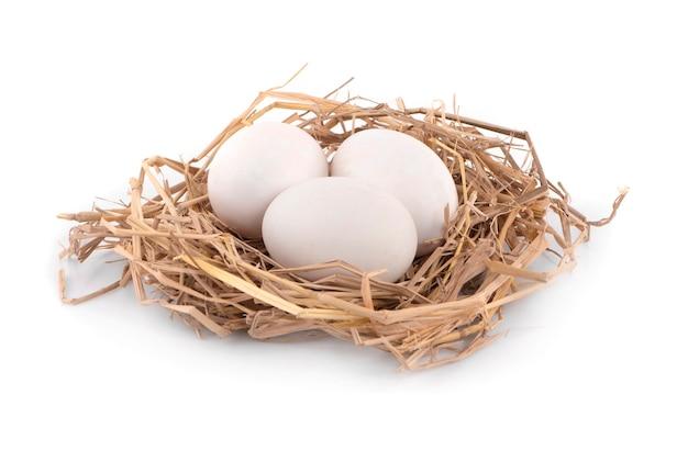 Drie eieren, nieuwe rauwe eiwitfoto in studio korte macro close-up en geïsoleerd op een witte achtergrond.