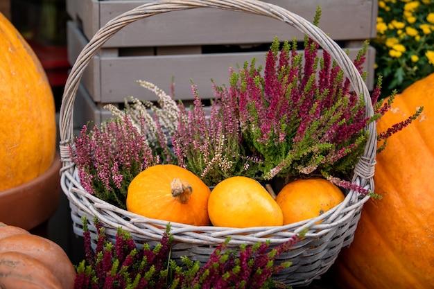 Drie gele pompoenen liggen in de mand. herfst oogsttijd.