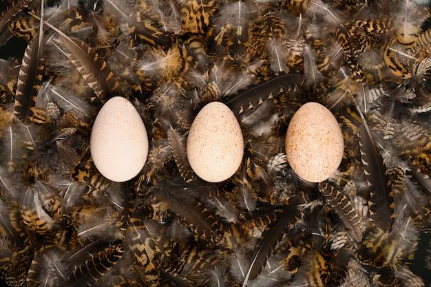 Drie kalkoen ei op veren. boho-stijl. versierde eieren voor pasen. alternatieve decoratie.