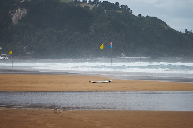 Drie kleurrijke strandvlaggen en een surfplank op winderig strand onder donkergroene beboste heuvels