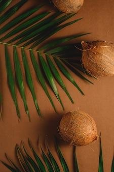 Drie kokosvruchten met palmbladen op trillende bruine duidelijke achtergrond, tropisch concept, hoogste mening