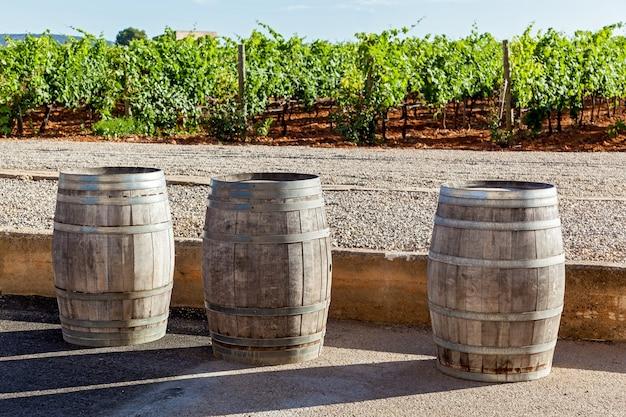 Drie pijpen voor wijnfermentatie staan op de achtergrond van de wijngaard, pijpen voor wijnfermentatie
