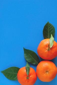 Drie rijpe mandarijnen aan de zijkant van een blauw oppervlak.
