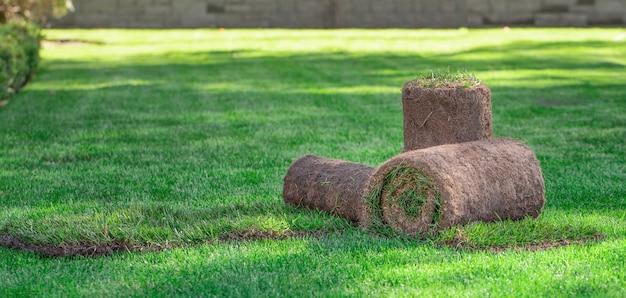 Drie rollen gazongras in de achtertuin op een zonnige dag. klaar gras om te leggen, landschapsarchitectuur in de buurt van het huisje.