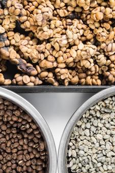 Drie staten kopi luwak-koffiebonen
