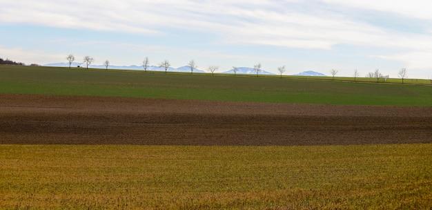 Drie velden van gewassen met gele, bruine en groene kleuren en met bomen en bergen