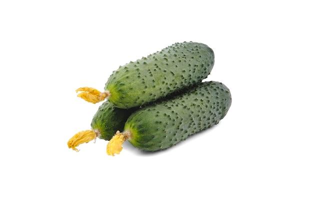 Drie verse komkommers geïsoleerd op wit