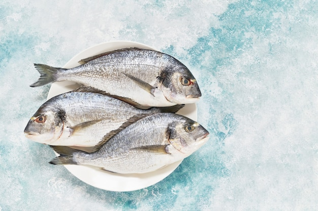 Drie verse koninklijke dorada op blauwe achtergrond gezond voedsel concept bovenaanzicht kopie ruimte