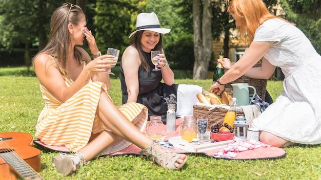 Drie vrouwelijke vrienden die van de dranken op picknick genieten