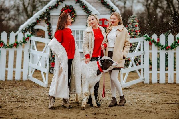 Drie vrouwen poseren met kleine stier tegen versierde boerderij onder het sneeuwt.