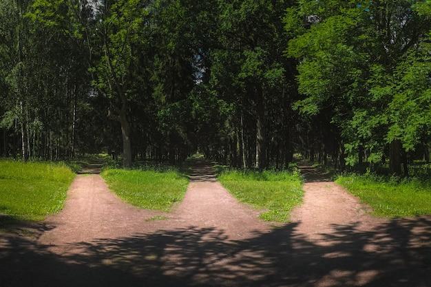 Drie wegen in het bos, keuze van pad