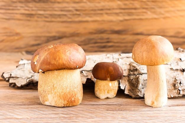 Drie witte rauwe champignons op een houten ondergrond met schors gemaakt van hout. herfst samenstelling. vooraanzicht.