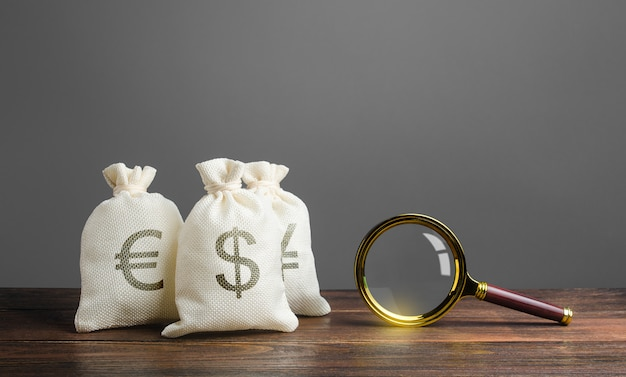 Drie zakjes geld en een vergrootglas. zoek naar investeringen en financiering voor projecten.